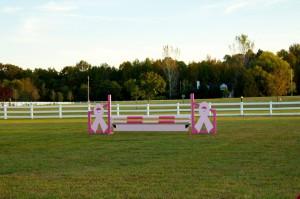 pink jump